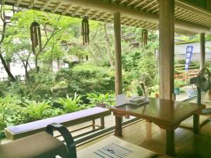庭に臨む風景はまるで日本画のよう