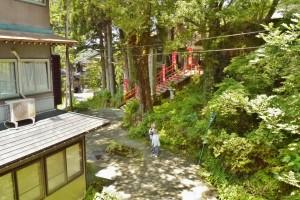 緑に囲まれた2階からの眺め