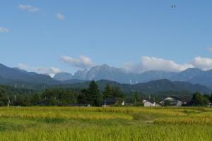 剱岳と田園風景とツバメ