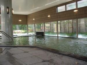 アルプスの湯の全身浴場