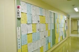 廊下にはたくさんの求人情報を掲示