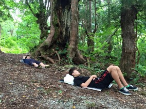 エコ実習での森林セラピーの様子