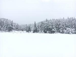 大岩へ向かう途中。何の跡もない真っ白な雪景色です
