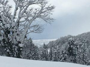大岩の駐車場から見える富山平野