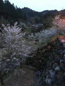 ライトアップ前(写真提供:山下絵里さん)