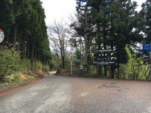 東福寺野自然公園との分岐を左へ曲がる