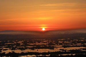 上市町大観峰からの夕陽の田んぼ(撮影:内山修さん)
