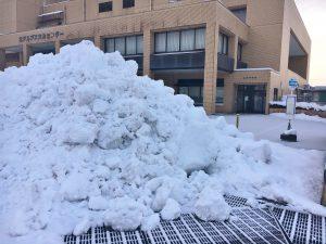 バス停より高い雪山