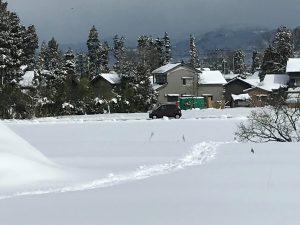 上市町の風景(撮影:クロポッケ黒田直美さん)