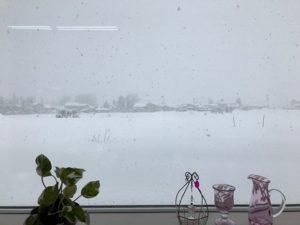 窓からの雪景色(撮影:クロポッケ黒田直美さん)